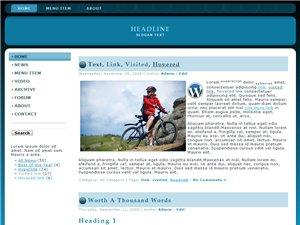 Wordpress Theme 21