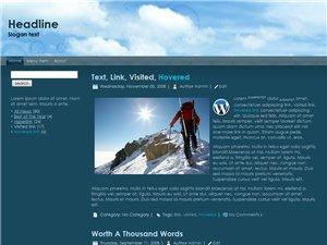 Wordpress Theme 33